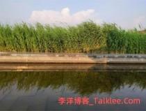 大沈阳最新网红打卡地炫彩音乐喷泉落户浑南中央公园