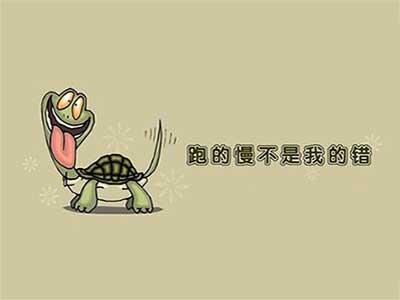 龟速.jpg